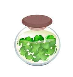 Jar of gotu kola tea with pandan leaves vector