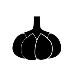 garlic black color icon vector image vector image