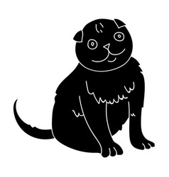 scottish fold icon in black style isolated on vector image vector image