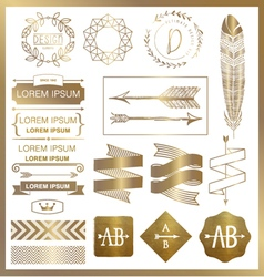 SET OF GOLD GRAPHIC DESIGN ELEMENTS vector image