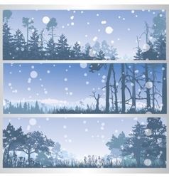 Set of winter forest banners vector image