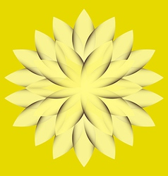 Yellow wheel flower vector