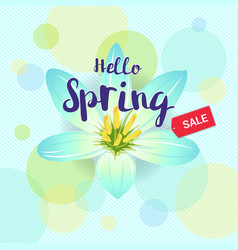Floral spring with light blue flower and colorful vector