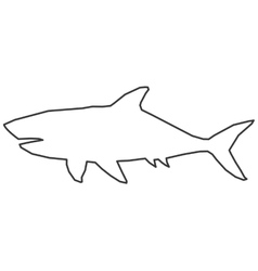 Shark outline icon vector