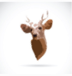 deer head on white background wild animals vector image