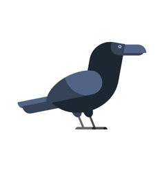 Carrion crow raven with wide-spread wings black vector