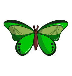 Butterfly great mormon icon cartoon style vector