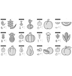 Healthy food line icon set vector image