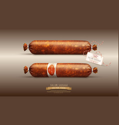 Object smoked sausage salami in realism style vector