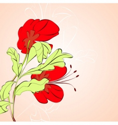 Floral card with red flowers vector