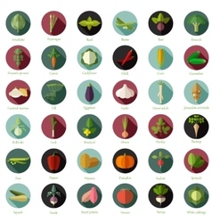 Set of flat round vegetable icons vector