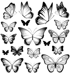Butterfly silhouettes vector