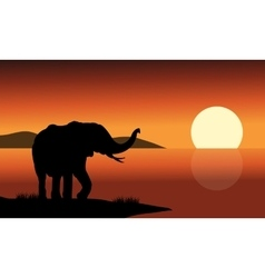 Silhouette of one elephant in beach vector