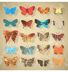 collection of different butterflies vector image vector image