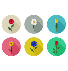 flowers flat icons vector image