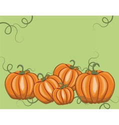 Fresh Pumpkins on green vector image