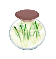 Jar of pickled fennels with malt vinegar vector