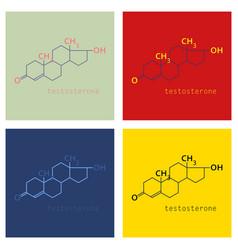 Set of testosterone male sex hormone androgen vector