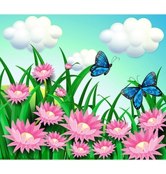 Butterflies at the garden with pink flowers vector image