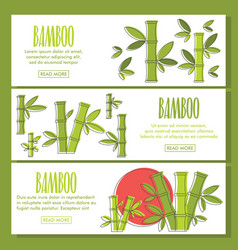 bamboo doodle three horizontal banners vector image
