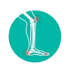 Human leg pain zones Design elements for vector image