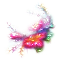 beautiful flower on white background vector image