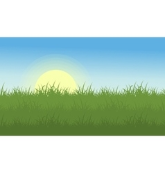 Landscape of grass at the morning vector