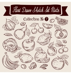 Fruit hand drawn sketch set vector