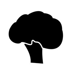 broccoli black color icon vector image