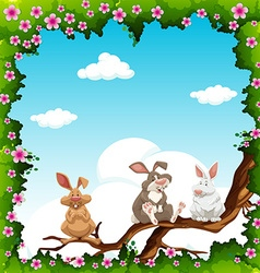 Flowers border and rabbits on branch vector