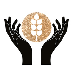Hands with wheat symbol vector