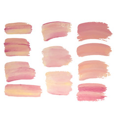 set of vaniila color paint oil painting grunge vector image