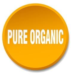 Pure organic orange round flat isolated push vector