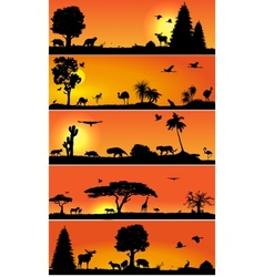 banners with wold fauna and flora vector image