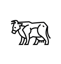 Linear stylized drawing of cow vector
