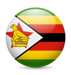 Round glossy icon of zimbabwe vector