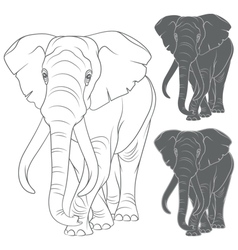 Set of with the elephant vector