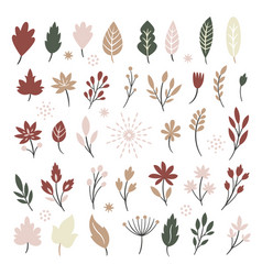 Set autumn leaves and brunshes vector