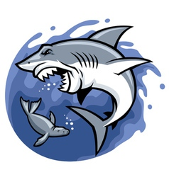 Shark and seal vector