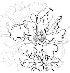 beautiful flower vector image