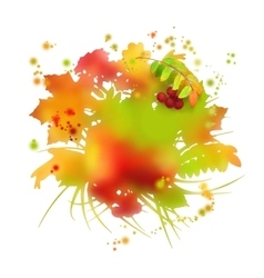 Watercolor autumn foliage vector