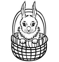 bunny basket vector image vector image