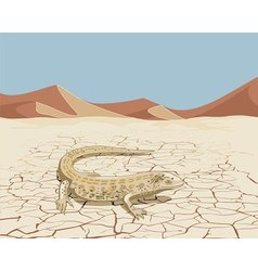 Landscape with lizard vector image