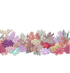 Coral reef line horizontal pattern vector