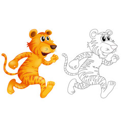 doodle animal for wild tiger vector image vector image