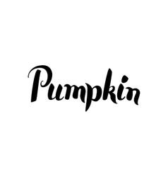 Pumpkin black calligraphy vector