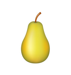 Fruit realistic ripe pear vector