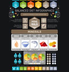 Minerals diet infographic diagram poster water vector