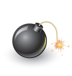 bomb vector image vector image