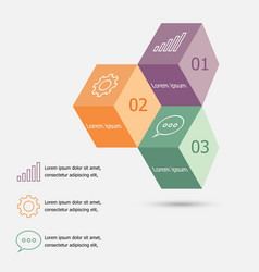 Design 3D box infographic template vector image